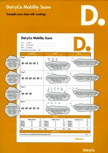 cover of dairyco score sheet